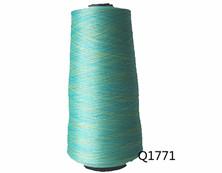 Q1771 100D/96F段染纱