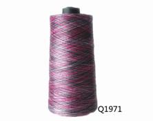 Q1971 100D/96F段染纱