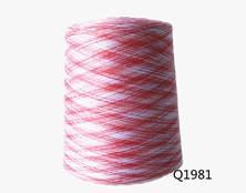 Q1981 150D/48F段染纱